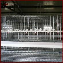 Una jaula de diseño de capa de diseño de marco de malla para granja de gallinas de Kenia