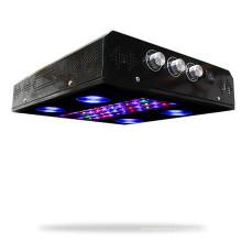 Full Spectrum 600w Noah4 painel levou crescer luz