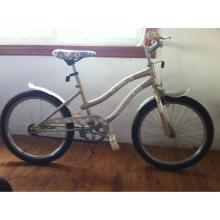 Beactiful Color OEM Factory Beach Cruiser Bike