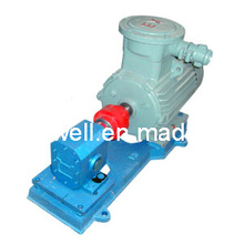 CE Approved DHB8/3.6 Boiler Ignition Gear Pump