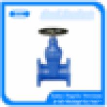 soft sealing cast iron foot valve dn80
