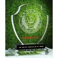 Concessão personalizada do troféu do cristal de vidro do projeto para presentes relativos à promoção