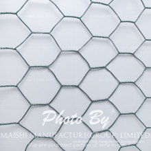 Galvanized and PVC Coated Bird Animal Cages Hexagonal Wire Mesh