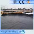 Geotextiles and Geomembranes/ Woven and Non Woven Geotextile Fabric