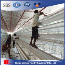 Équipement de volaille de ferme de poulet de couche de haute qualité chaude de Chine