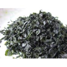 Hochwertige Algen getrocknete Seetang-Scheibe Laminaria