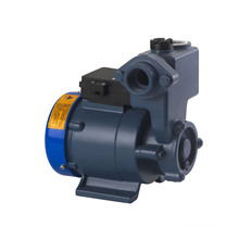 Self-Priming Vortex Pump (DGP Series)