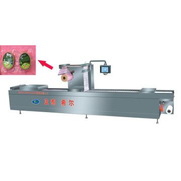 Seed Turning Film Roll Automatic Vacuum Packing Machine