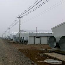 Estructura de acero Granja de pollos Construcción con equipo de producción