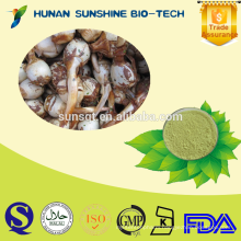 Favorable price of Indian Iphigenia Bulb Extract Powder 98% Colchicine