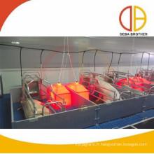 caisses de cochon équipement de porc galvanisé à chaud cage de mise bas