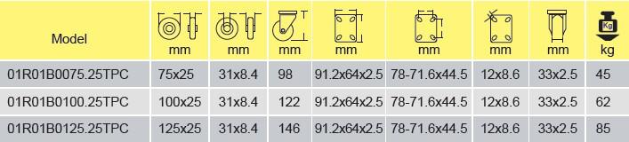 Parameters of 01R01B0075.25TPC