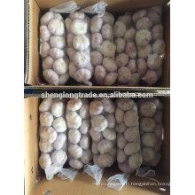 Ail blanc normal 10 kg par carton 2017 Chine Jinxiang ail frais
