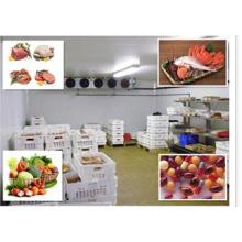 Sala de Cogumelos, Sala Fria Comercial para Restaurante