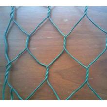 Malla de alambre hexagonal de PVC verde para jaulas