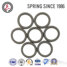 Oil Seal Springs for Auto Spare Parts