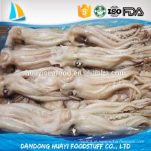Congelado Illex Argentinus Squid Cabeça tamanho diferente disponível