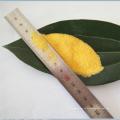 npk 20-20-20 polvo amarillo 100% fertilizante soluble en agua