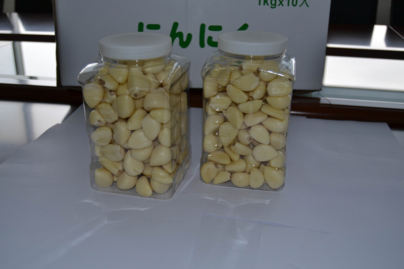 Shandong Fresh Fine Garlic