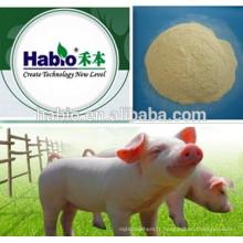15 ans meilleur prix du composé spécialisé de Habio Piglet / Multi-enzyme (additifs d'alimentation)