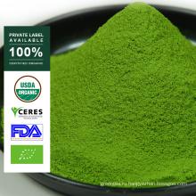 Private Label Органический порошок зеленого чая Матча