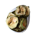 Factory Hot Sales chinese bitter melon best price