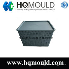 Plastic Injection Mould for Storage Box with ISO