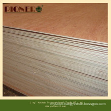 Hot Sales Commercial Plywood for Middle East Market