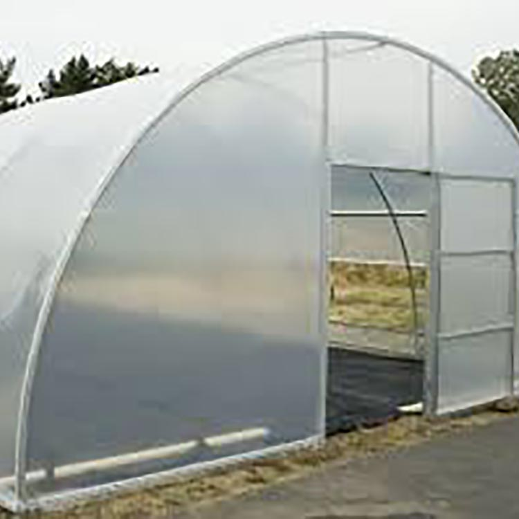 Gothic Arch Plastic Tunnel Greenhouse