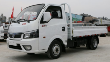 Gasoline 2 tons lorry truck 13