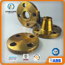 Hot Sale ASME B16.5 Carbon Steel Blind Flange Forged Flange (KT0270)