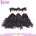 Wholesale 100 percent russian aunty funmi hair bouncy curls top grade 7a funmi human hair