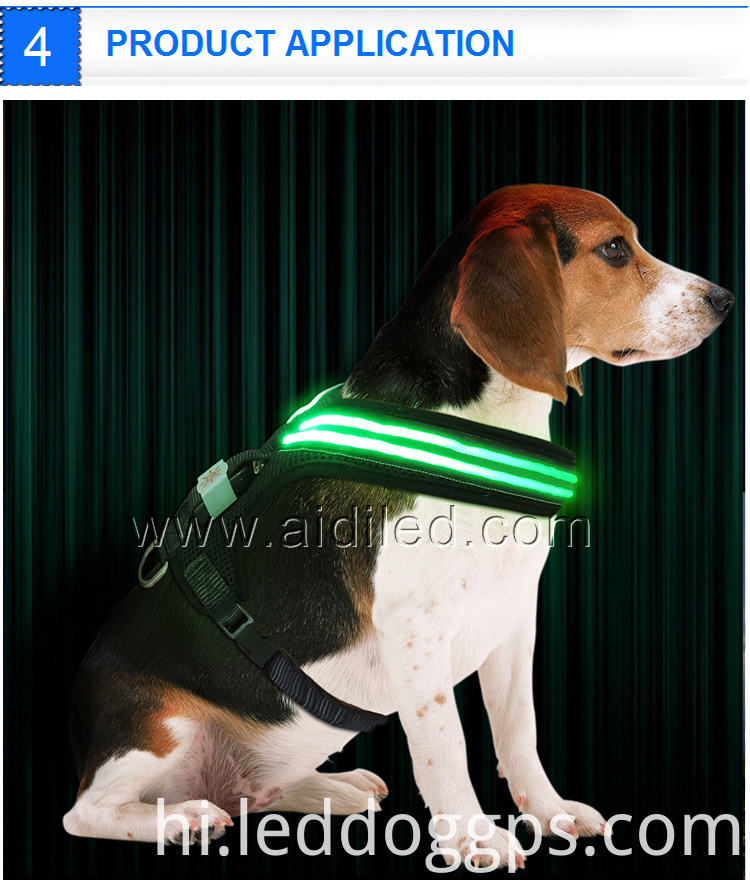 Led Night Safety Nylon Dog Harness