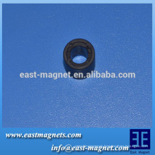 customized 10.2-5.3-8.8 multi-pole magnetic ring/Ferrite magnet Multiple Poles motor ring