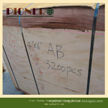 4*8′ Size Veneer Plb Poplar for India Market