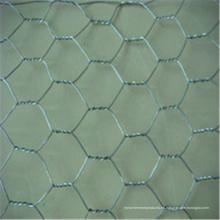 Malla de alambre hexagonal electro galvanizada