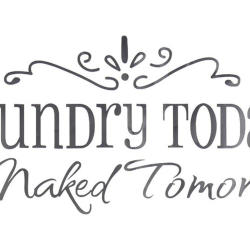 Wall Quote Laundry Today Wall Stickers