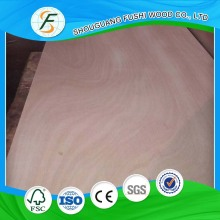 3mm Door Skin Plywood Veneer Plywood Door Skin