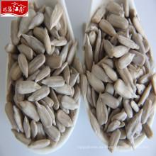 Semilla de granos de girasol de alta calidad al por mayor