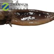 New Catching  Illex Squid Tube & Tentacle Squid t+t T&T