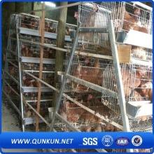 Куриная клетка фабрики Anping