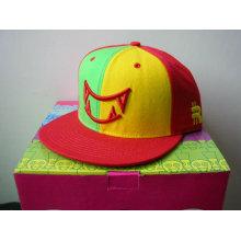 Benutzerdefinierte Snapback Trucker Cap / Hip-Hop Caps mit Stickerei