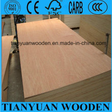 Bintangor Faced Furniture Plywood 8mm