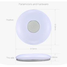 Wifi Led ceiling light with loudspeaker Fashionable