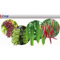 Fertilizante de calcio soluble en agua EDTA para la agricultura