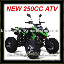 EEC 250cc ATV Quad (MC-381)