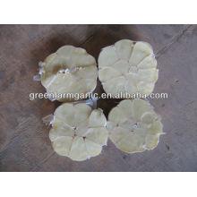 wholesale dubai market garlic price