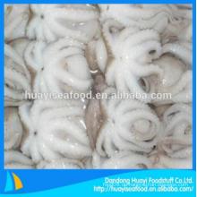 Neue frische gute gefrorene Baby-Oktopus hervorragende Anbieter