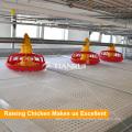 Автоматический бройлеров системы кормления птицы для H Тип курица клетка