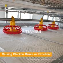 Système de cage de poulet Alimentateur de poulet automatique pour volaille